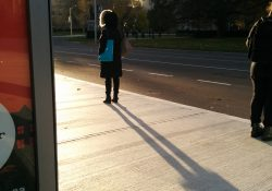 person looking into the sun